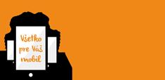 LacnyDisplej.sk Logo